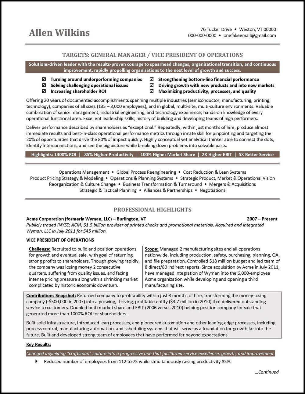 Vp Operations Resume Example Vice President Resume Example